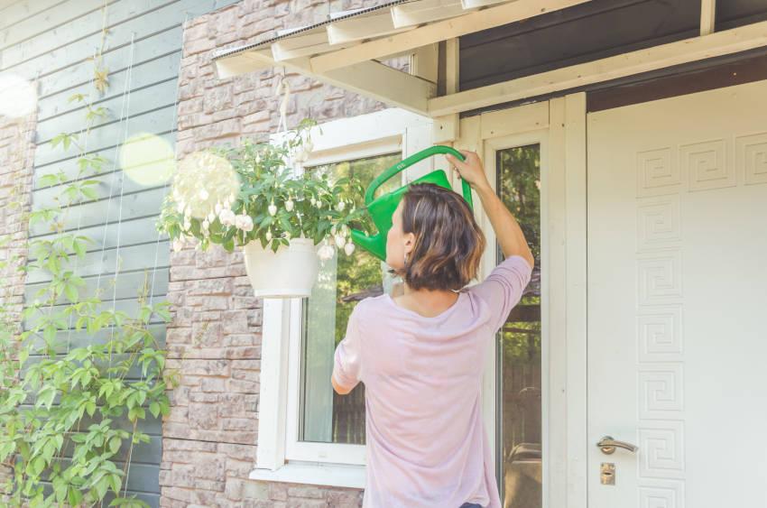 annaffiare le piante da esterno con acqua ozonizzata