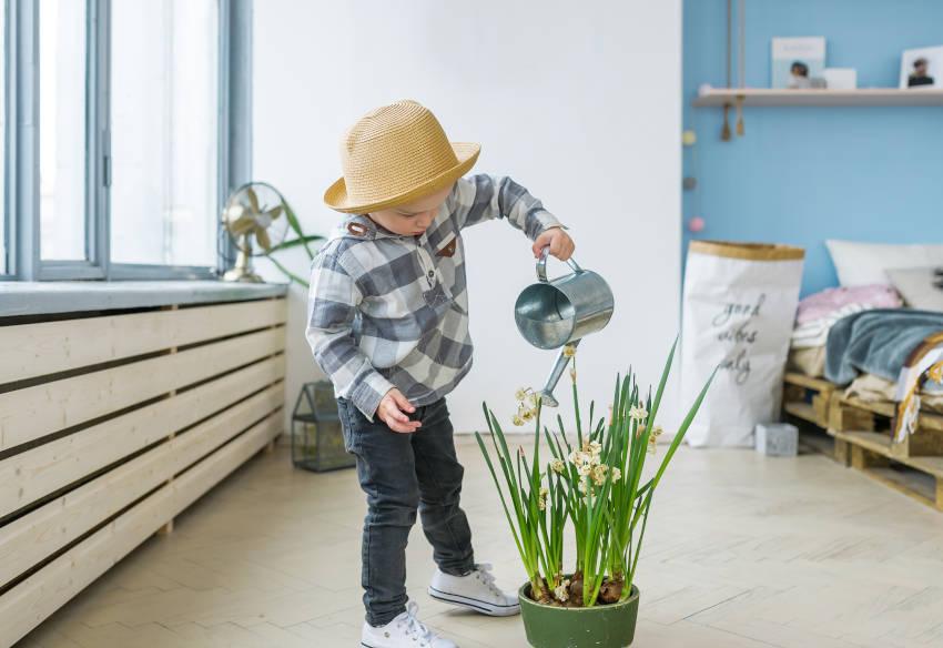 innaffiare le piante